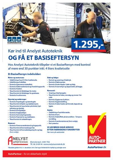 291262 Basiseftersyn - Flyer _A4 (2)